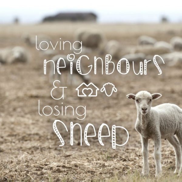 The Parable Of The Lost Sheep — Timaru Presbyterian Parish